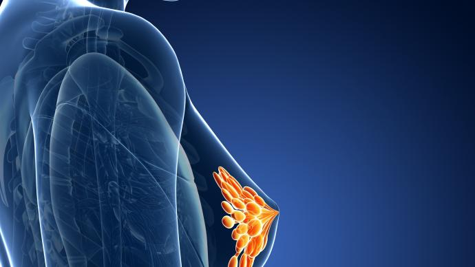 """Конференция """"Новые технологии лучевой диагностики  в охране женского здоровья и репродукции"""""""