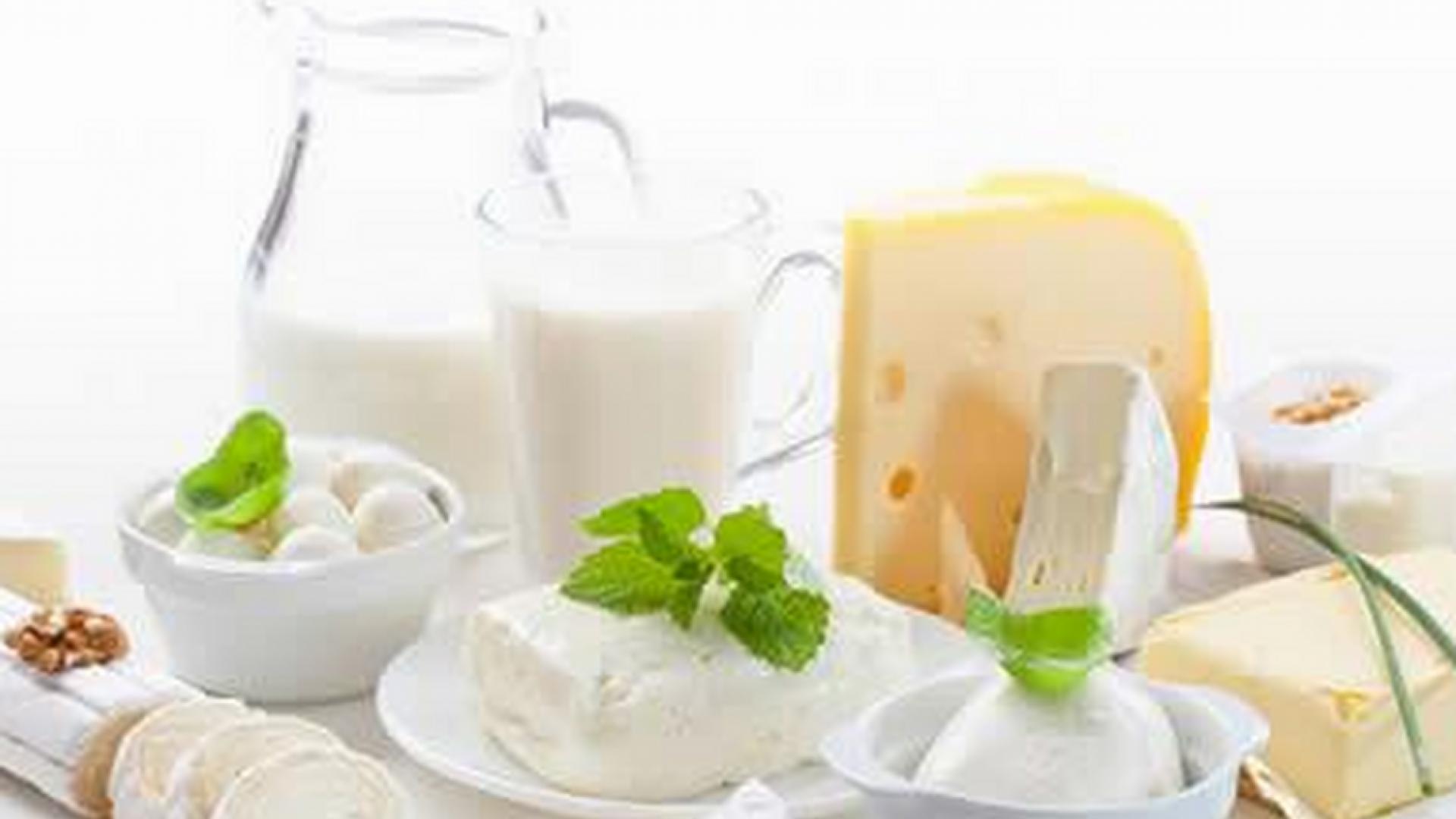 Сыр и кефир снижают риска развития рака груди у женщин